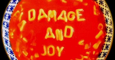 The Jesus & Mary Chain – Damage and Joy (Warner)