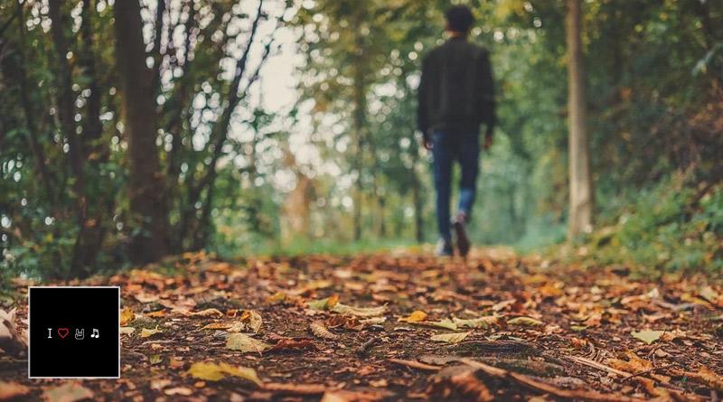 Especial: Canciones para un otoño extraño
